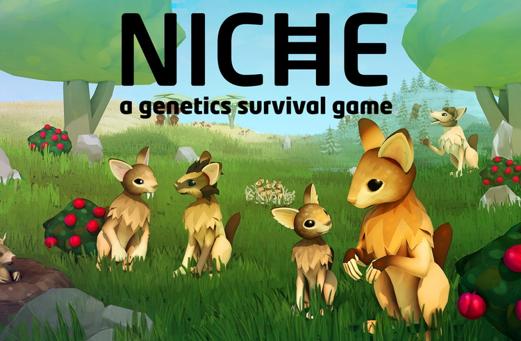 niche-download
