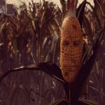maize-download