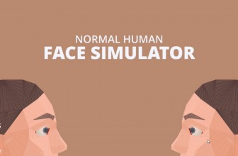 Normal Human Face Simulator